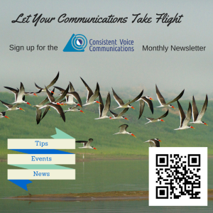 Let your communications take flight. Sign up for the Consistent Voice Communications (logo) Monthly Newsletter. Tips. Events. News. (Background: Birds taking flight.) QR code.